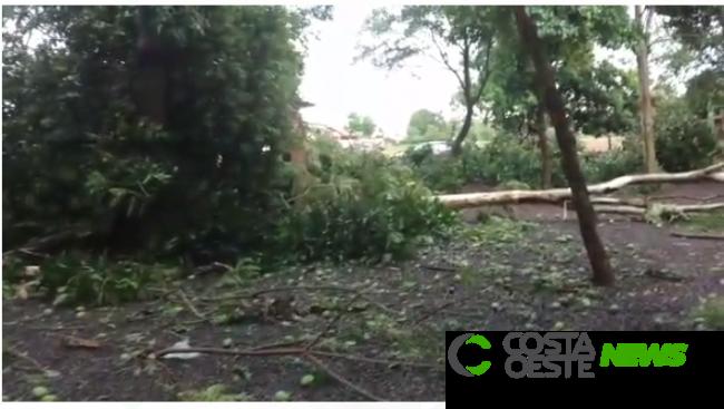 VÍDEO: Temporal atinge a região e deixa rastro de destruição na prainha de Itaipulândia
