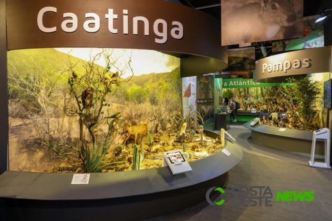 Itaipu Natureza faz promoção em abril e reduz ingresso pela metade
