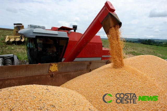 Produção de grãos cresce 3,4% e chega a 235,3 milhões de toneladas