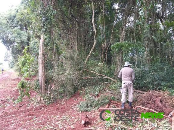 Vereador de Serranópolis abre caminho beira parque e é acionado por crime ambiental