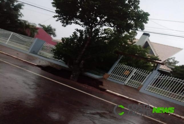 Vento forte derruba árvore e rompe rede de energia em Matelândia