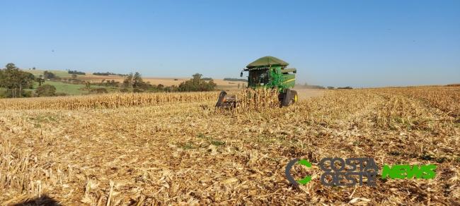 Expedição Costa Oeste: Colheita do milho avança na região e família aposta no aluguel de máquinas agrícolas