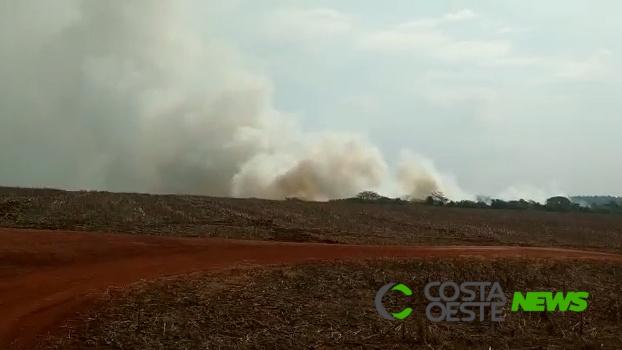 Quatro incêndios ambientais são registrados em um dia em Guaíra