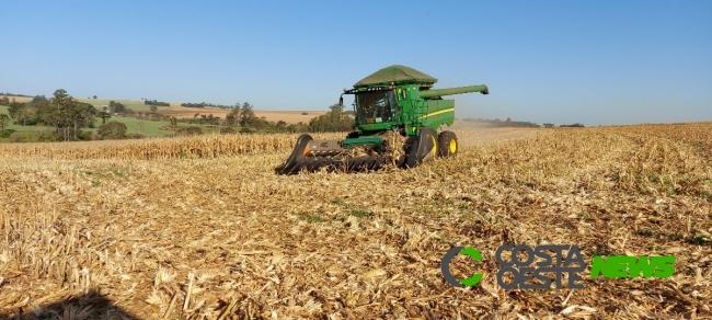 Profissionais da agricultura de Guaíra se reúnem para avaliar safra
