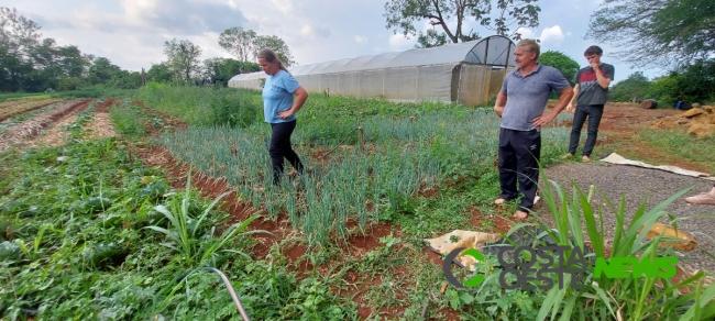 Expedição Costa Oeste: Casal deixa cidade para se dedicar a produção de orgânicos