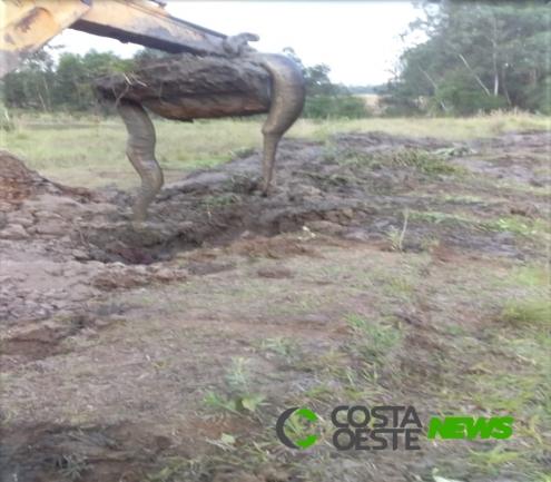 Produtor rural de Santa Helena encontra Sucuri em escavação