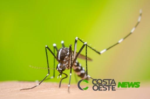 Com as altas temperaturas a população deve ficar atenta aos cuidados com a dengue