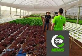 Expedição Costa Oeste: Família encontra vocação na produção de hortaliça hidropônicas