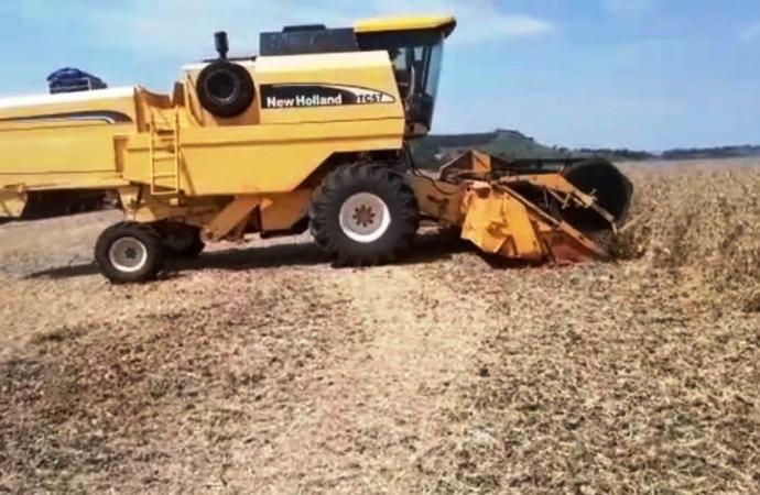 Agricultor aproveita clima bom e acelera colheita da soja em Medianeira