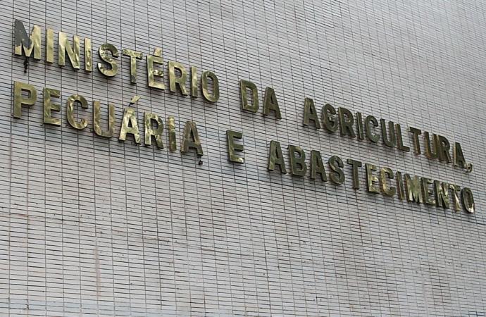 Brasil registra dois casos da doença da vaca louca