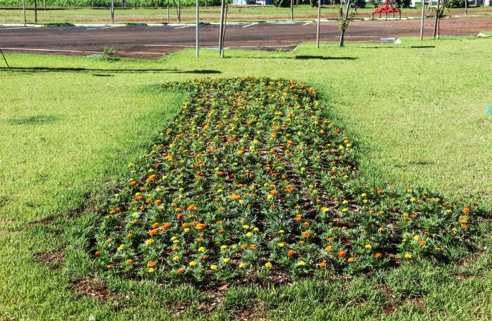 Canteiros de flores ganham cor em Serranópolis do Iguaçu