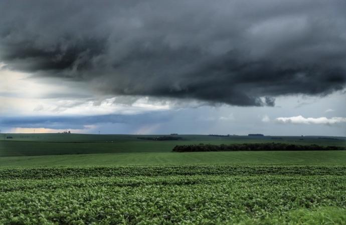 Chuvas retornam ao Paraná e oferecem melhores condições de plantio