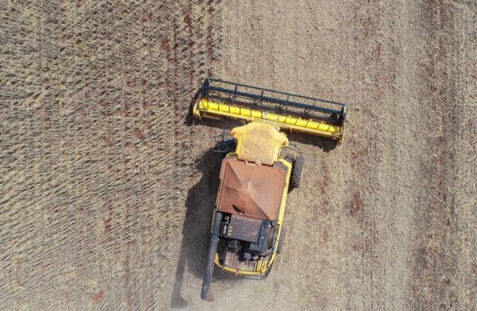Colheita de soja em Missal atinge praticamente metade da área plantada