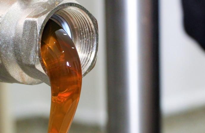 Exportação e bons preços representam cenário positivo para mercado do mel em Santa Helena e região