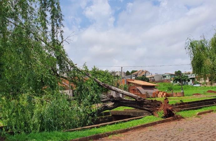 Forte chuva causa prejuízo em Medianeira