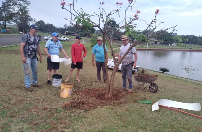 Grupo de voluntários auxilia o crescimento das árvores no Lago Municipal de Missal