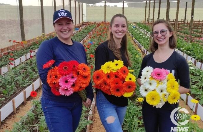 Onde prospera milho e soja três irmãs decidiram inovar cultivando flores