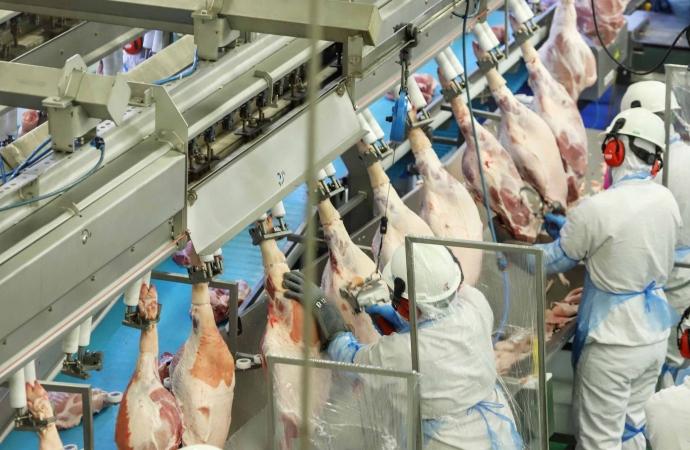 Paraná ampliou a produção e o protagonismo na cadeia de carnes em 2020