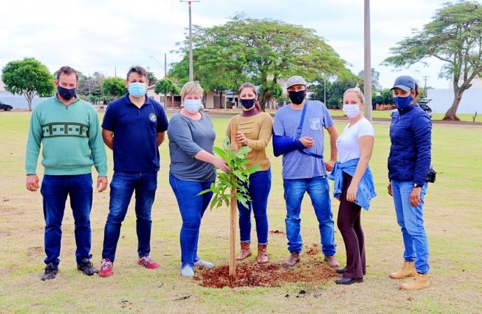 Plantio de árvores na Praça Edi Berghahn em Itaipulândia deixa legado de sustentabilidade e cidadania