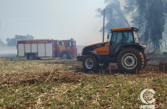 Quatro incêndios ambientais acontecem simultaneamente em Santa Helena