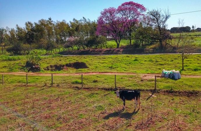 Regularização fundiária alcança mais de 1,2 mil pequenos produtores