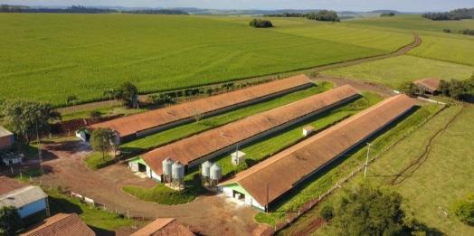 14 municípios do PR ultrapassam R$ 1 bi em Valor Bruto da Produção Agropecuária
