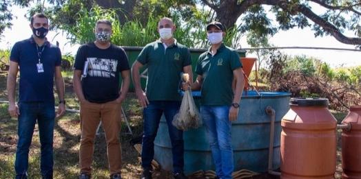 Acadêmicos de Veterinária desenvolvem Projeto de Pesquisa e Extensão com a implementação de aquaponia para produção de peixes e forragens