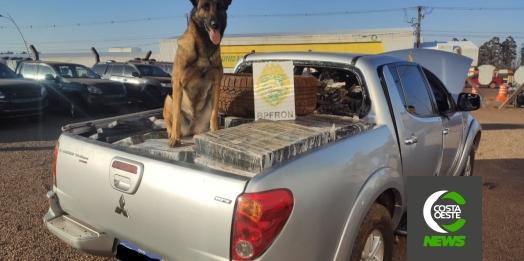 BPFRON apreende veículo carregado com mais de uma tonelada de maconha em Pato Bragado