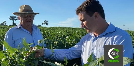 Expedição Costa Oeste: Lavouras crescem com a força do cooperativismo na região oeste do Paraná