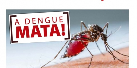 Índice de infestação do mosquito da dengue acima de 6% preocupa setor de saúde em Santa Helena
