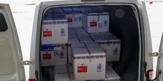 Ministério da Saúde entrega 233 mil vacinas contra a Covid-19 ao Paraná
