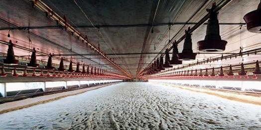 Os incentivos do AGROFORTE continuam atendendo produtores em Itaipulândia