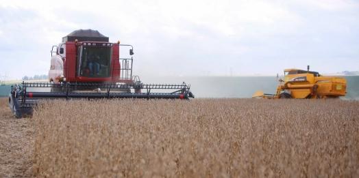 Paraná poderá produzir 42 milhões de toneladas de grãos