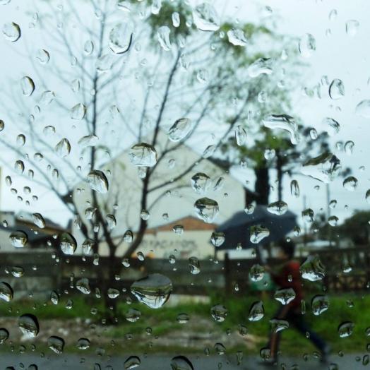 Chuva traz alívio para agricultores e produtores; maior precipitação chegou a 46mm, o menor foi de 8mm na região
