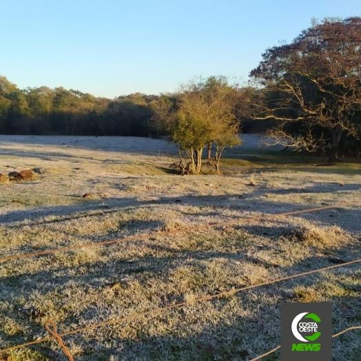 Mais de 30 cidades registram temperaturas negativas no Paraná, segundo SIMEPAR