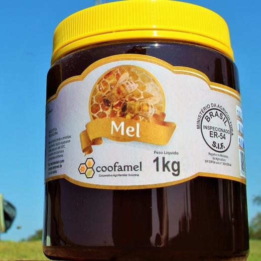 Mesmo com chuva grande quantidade de mel ainda deve ser colhida em Santa Helena e região