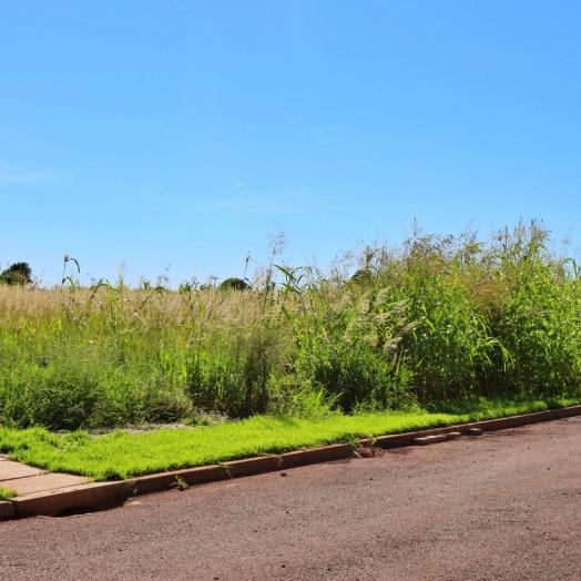 Multa será aplicada a proprietários de terrenos baldios em Itaipulândia