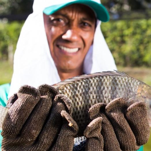 Itaipulândia realiza Chamamento Público para piscicultura comercial