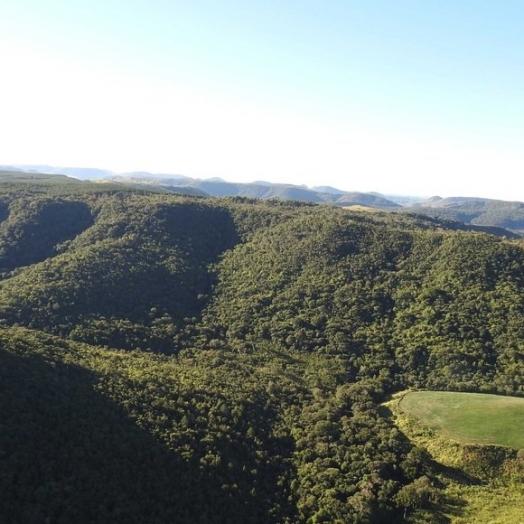 Municípios do Paraná devem cadastrar suas áreas de conservação até o dia 30 de julho