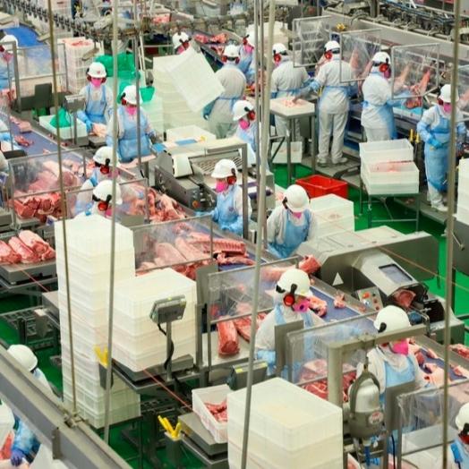 Produção de carnes no Paraná tem ano de recordes em 2020