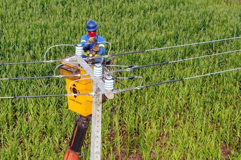 Paraná Trifásico concluiu 2,8 mil quilômetros de novas redes . Foto: José Fernando Ogura/AEN